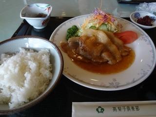高梨子-2013-02.jpg
